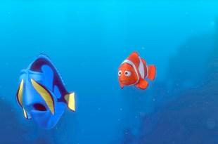 忘記代表什麼?原來我們根本沒有看懂《多莉去哪兒》- 海底總動員2-動漫的故事