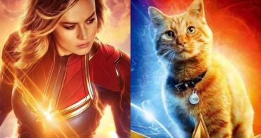 看完了《復仇者聯盟4》才驚覺「《驚奇隊長》中的黃貓驚人身世之謎?」... - 我們用電影寫日記