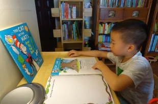 [揪團] 用了快5年「MesaSilla木製自主桌椅」 兒童傢俱|居家閱讀遊戲角必備
