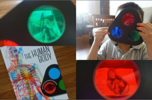 [幼兒STEAM科學書單] 好玩的三色鏡魔法書|Lens Book The Human Body與Lens Book Animals