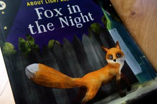 好少見的科學故事繪本|Fox in the Night|非常值得推薦共讀