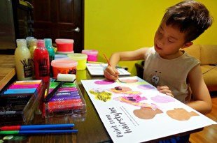 感覺統合紀錄-孩子行為的背後都有原因(更新文)