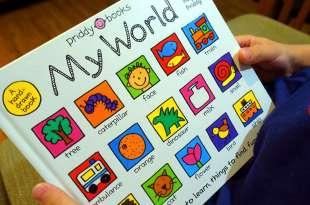 同大爺好喜歡的硬頁書|My World 手繪卡通簡筆大全|超過350個生活單字