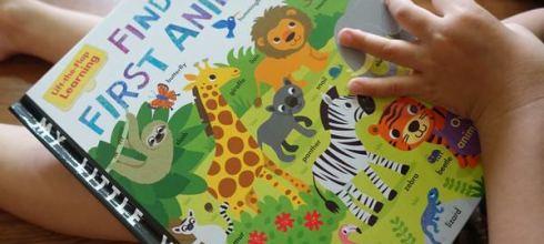 超過100種動物~孩子好愛翻 ●Finding First Animals ● 動物硬頁翻翻書