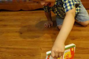 [同大爺的第一份共讀書單] ●DEAR ZOO●還有車車造型書(適合1-3歲的硬頁書)