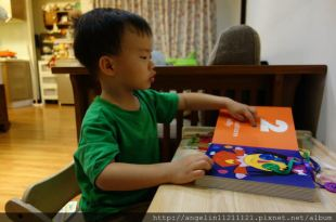 同大爺書報●適合1-3歲小人的硬頁書單●(五)-費雪翻翻書,小手鈕扣書及觸摸書