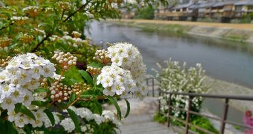[日本旅誌/旅人包] 2011 Japan Travelog-Osaka, Kobe, Kyoto