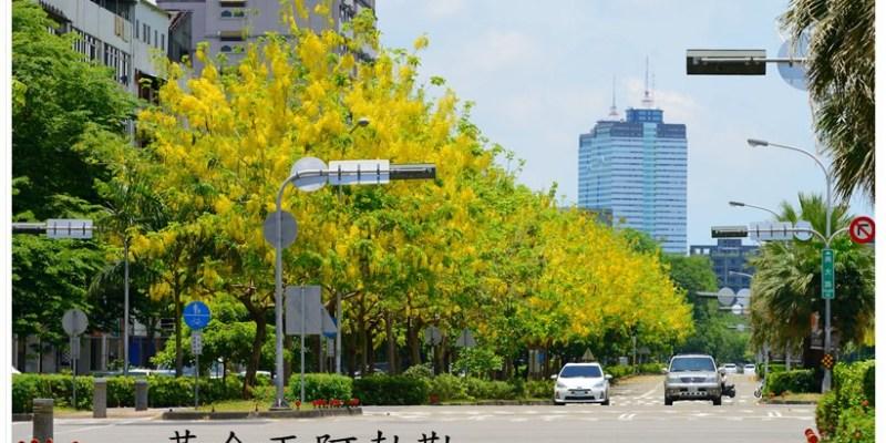 [台中。南區] 2013 興大路看黃金雨阿勃勒 (06/02)