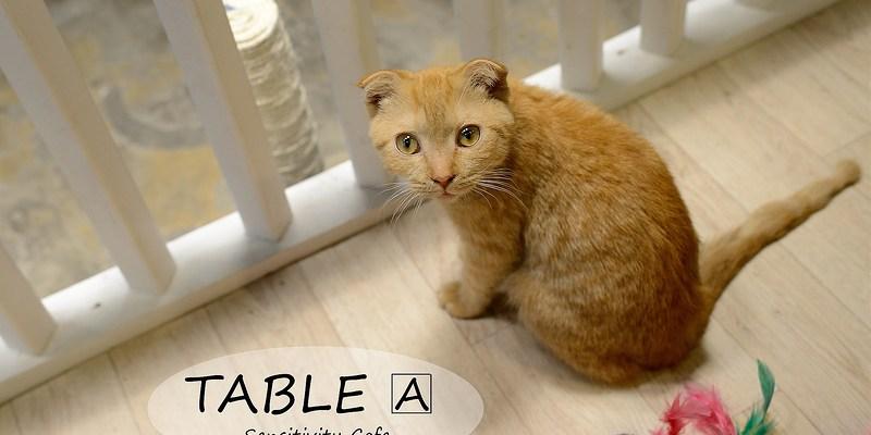 [Seoul。食] 梨大 TABLE A
