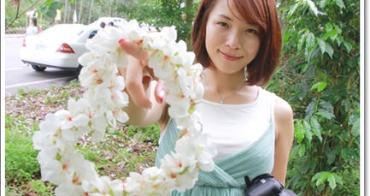【旅遊】雲林古坑荷苞山~落滿山的五月雪油桐花