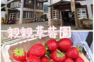 【花蓮遊記】親親草莓園~原來鳳林也有草莓園之適合親子同樂的好去處
