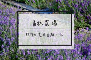 【桃園觀音】青林農場~放假很適合來溜小孩DIY體驗的休閒農場