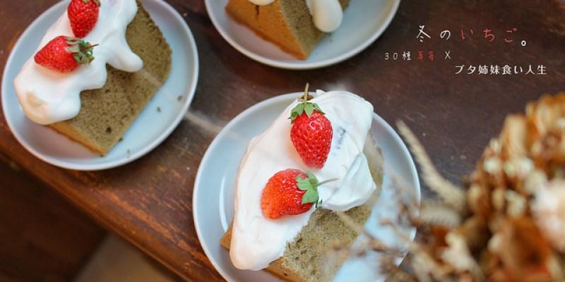 草莓商品推薦總整理-30種草莓大集合!這個冬天草莓控你吃了幾種?