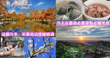 【台南旅遊】梅嶺梅花|落羽松|泥漿溫泉|台南美食~~這個冷冬─來臺南這樣暖暖過