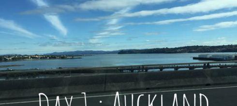 【帶著媽咪度蜜月】紐西蘭Day1:奧克蘭半日遊。Cornwall Park散步喝咖啡看小羊