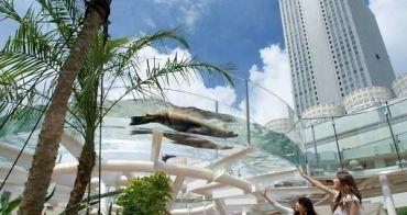 [東京池袋親子景點]池袋陽光城水族館,日本第一個屋頂上的水族館