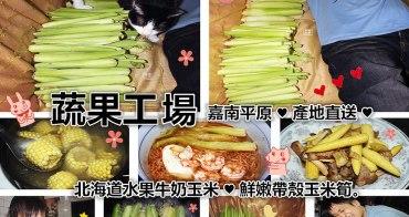 團購美食   蔬果工場 北海道水果牛奶玉米 鮮嫩帶殼玉米筍