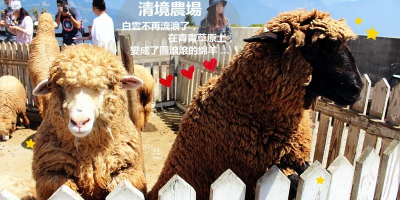 合歡山景點 | 清境農場 白雲不再流浪 因為它住在青青草原上 變成了圓滾滾的綿羊