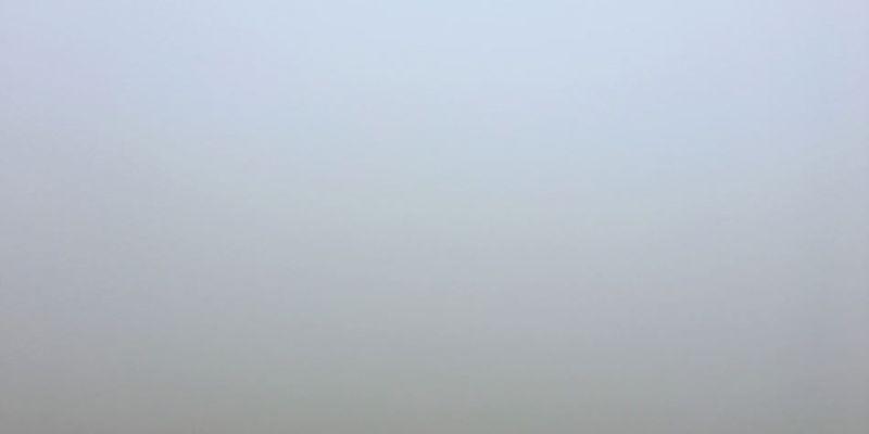 台北士林景點   擎天崗 陽明山國家公園