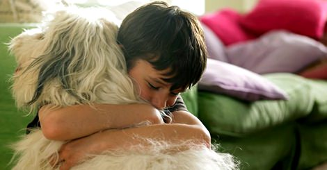 【寵物】什麼?擁抱會讓狗狗感到有壓力!?
