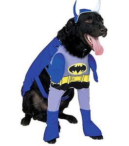 un-costume-de-batman_55477_w460.jpg