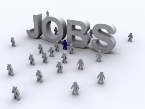 job_search.jpg