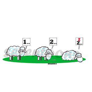 moutons.jpg