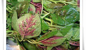 【9~11m】副食品:有機油菜‧有機紅莧菜