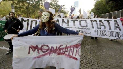 Demonstrators participate in a protest march against Monsanto, the world's largest seed company, in Buenos Aires, Argentina, May 23, 2015. (Reuters / Enrique Marcarian )
