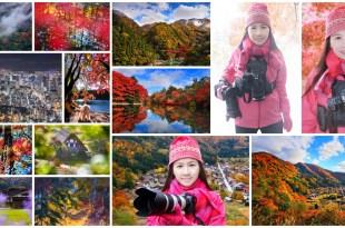 Shirley 老師 『日本~楓葉.銀杏』& EOS R 系統 . RF 鏡頭 . 轉接環 . 風景攝影 . 線上教學