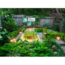 Posh Fast Backyard Decor Ideas Overall After 0612 Outdoor Party Decorations Backyard Basics Home Outdoor Outside Decorating Ideas outdoor Outdoor Backyard Decor