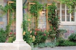 Glancing An Trellis Panel Use Se Directions To Construct A Garden Garden Lattice Wall Art