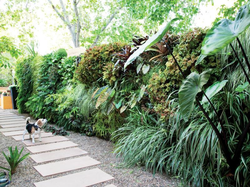 Large Of Landscaping Ideas Backyard