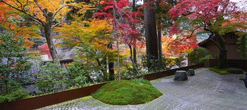 [自助旅行] 京都星野嵐山飯店,楓葉季節推薦飯店(hoshinoyakyoto)