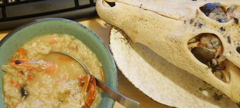 [食譜] 鱷魚舌頭處理方法與鱷魚頭海王粥料理