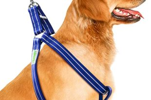CoolPets Dog Harness Leash Collar Set