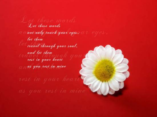 Valentines Day Lovely Quotes On Wallpapers Valentines Day Lovely. 1024 x 768.Valentine's Day Quotes Images