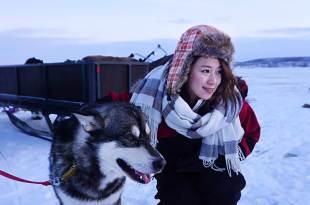 瑞典極光|北極冰釣。那日我乘著雪撬,在冰天雪地下,哈士奇陪我冰上釣魚!