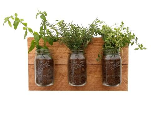 Medium Of Wall Mounted Indoor Herb Garden