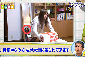 【放送事故画像】お姉ちゃんパンツ見えてる~wテレビにはっきり映ったパンチラ画像! 10