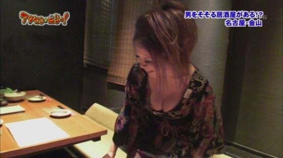 【放送事故画像】女子アナやアイドルが胸元チラチラ見せるもんだから勃起してきたんだがwww 17