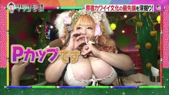 【放送事故画像】テレビでコスプレしたエロカワイイ女達が映ってるぞwww 09