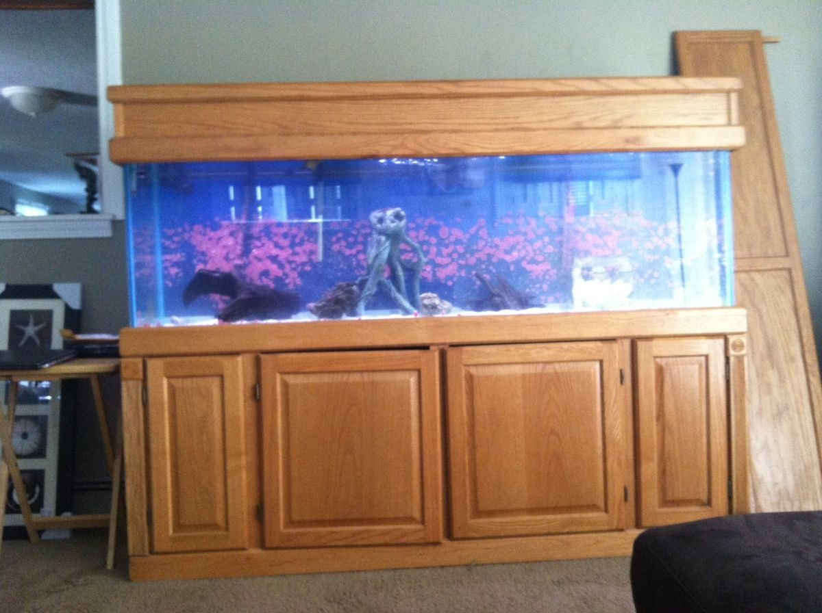Fish tank with stand and canopy 90 gallon bowfront for Custom fish tank stand
