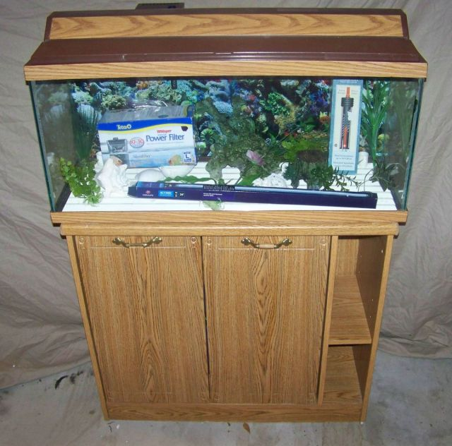 Fish tank decorations 30 gallon 30 gal 2017 fish tank for 10 gallon fish tank heater