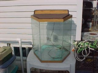 100 gallon octagon fish tank 55 gal hexagon fish tank for 20 gallon hexagon fish tank