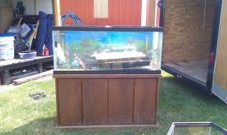 90 gallon hexagon tank fish tank aquarium rare