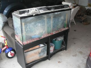 100 gallon fish tank hood 100 gallon aquarium stand for 10 gallon fish tank heater