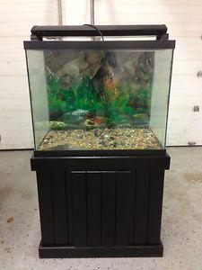 55 gallon fish tank tall 55 gallon aquarium set 80 in for 55 gallon hexagon fish tank
