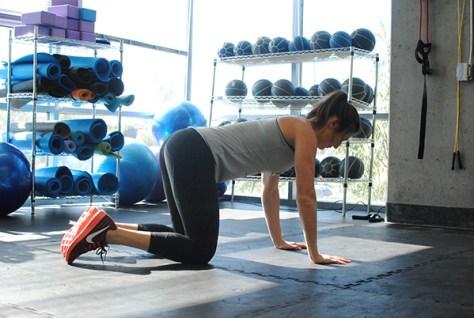Quadruped Hip Extension A