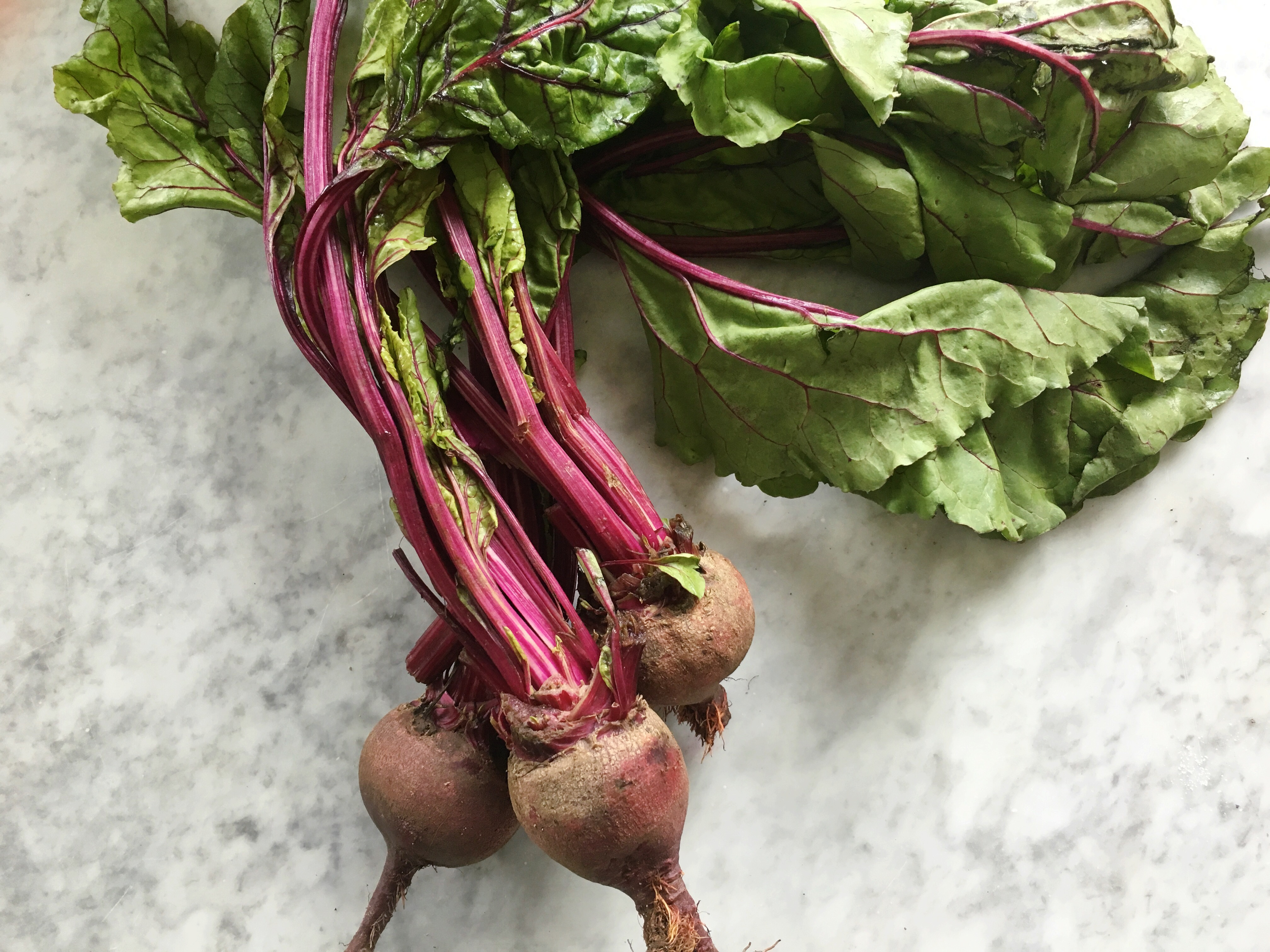 Comfortable Sand Keep How To Use Whole Beet Root Cooking Light How To Store Beets After Picking How To Store Beets houzz-03 How To Store Beets